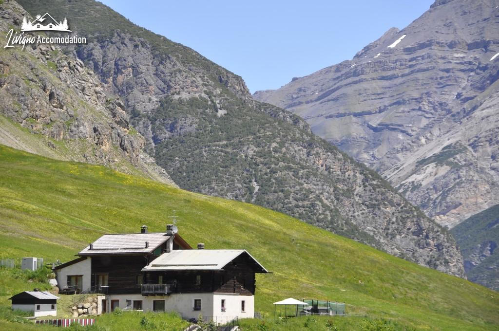Livigno Appartamenti Green Esterno (1)