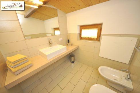 Livigno-Appartamenti-Green-Van-Gogh-13