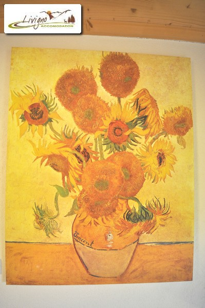 Livigno-Appartamenti-Green-Van-Gogh-25