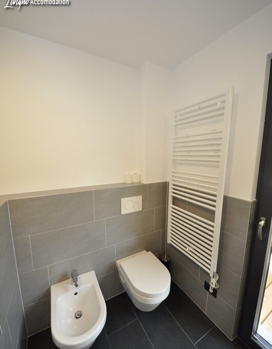 Appartamenti Livigno Eco House Mirko Panorama (31)