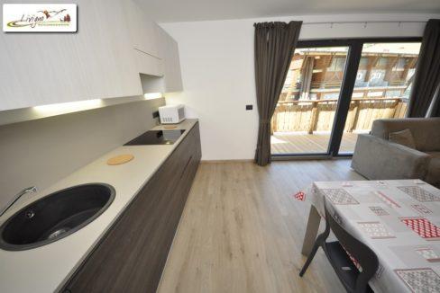 Appartamenti-Livigno-Eco-House-Mirko-Panorama-5