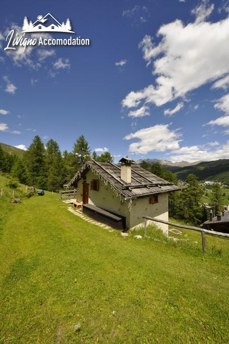 Appartamenti Livigno Baita Hanzel & Gretel - Hanzel (2)