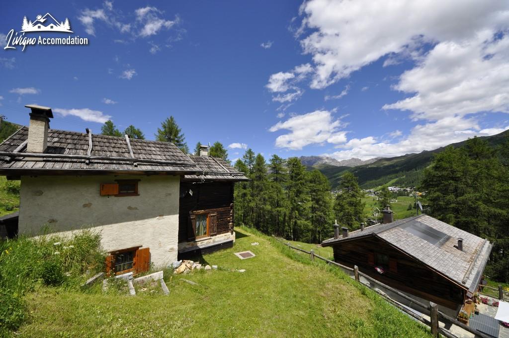 Appartamenti Livigno Baita Hanzel & Gretel - Hanzel (5)