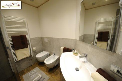 Appartamenti-Livigno-Alpen-Flower-Thomas-Trilo-Bagno-2