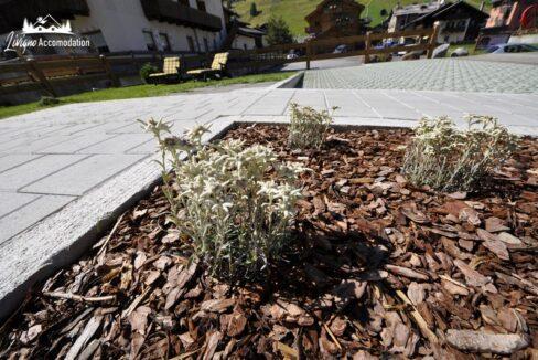 Appartamenti Livigno - Raggio di Sole (17)
