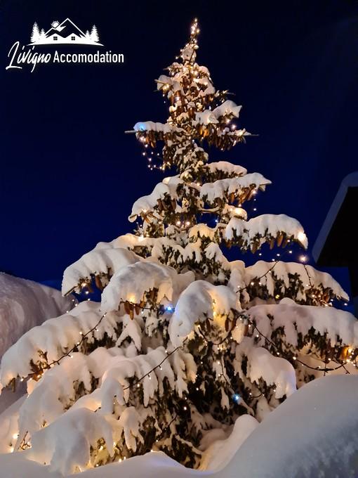Appartamenti Livigno - Alpen Royal Esterni Inverno (10)